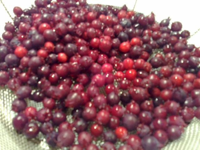 june-berry-jam-2