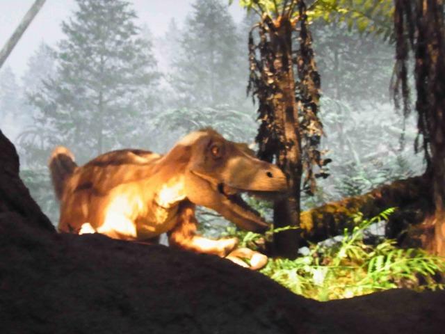 エンバイラマ館の恐竜