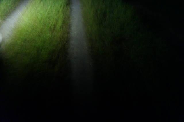 帰り道 明かりがなく、暗い