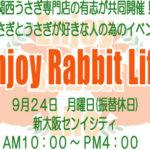"""Enjoy Rabbit Life"" in Osaka"